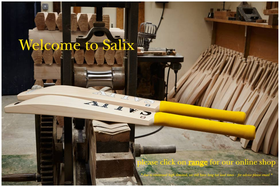 <a href='benchmark.html'>our batmaking benchmark - what makes Salix bats so different...</a>